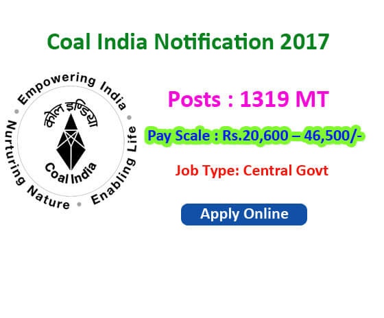 coal india ltd jobs
